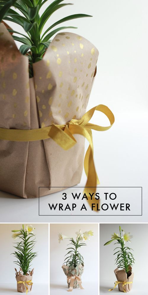 Sending any leafy greens to your favorite folks? Here's the best way to wrap...