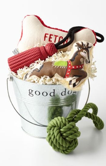 Cutest puppy gift. ever! #loveit #xmas rstyle.me/...