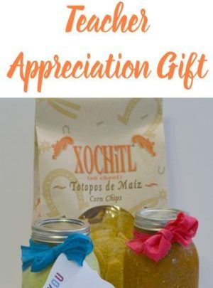 Basket Gifts : Chips and Salsa Teacher Appreciation Gift