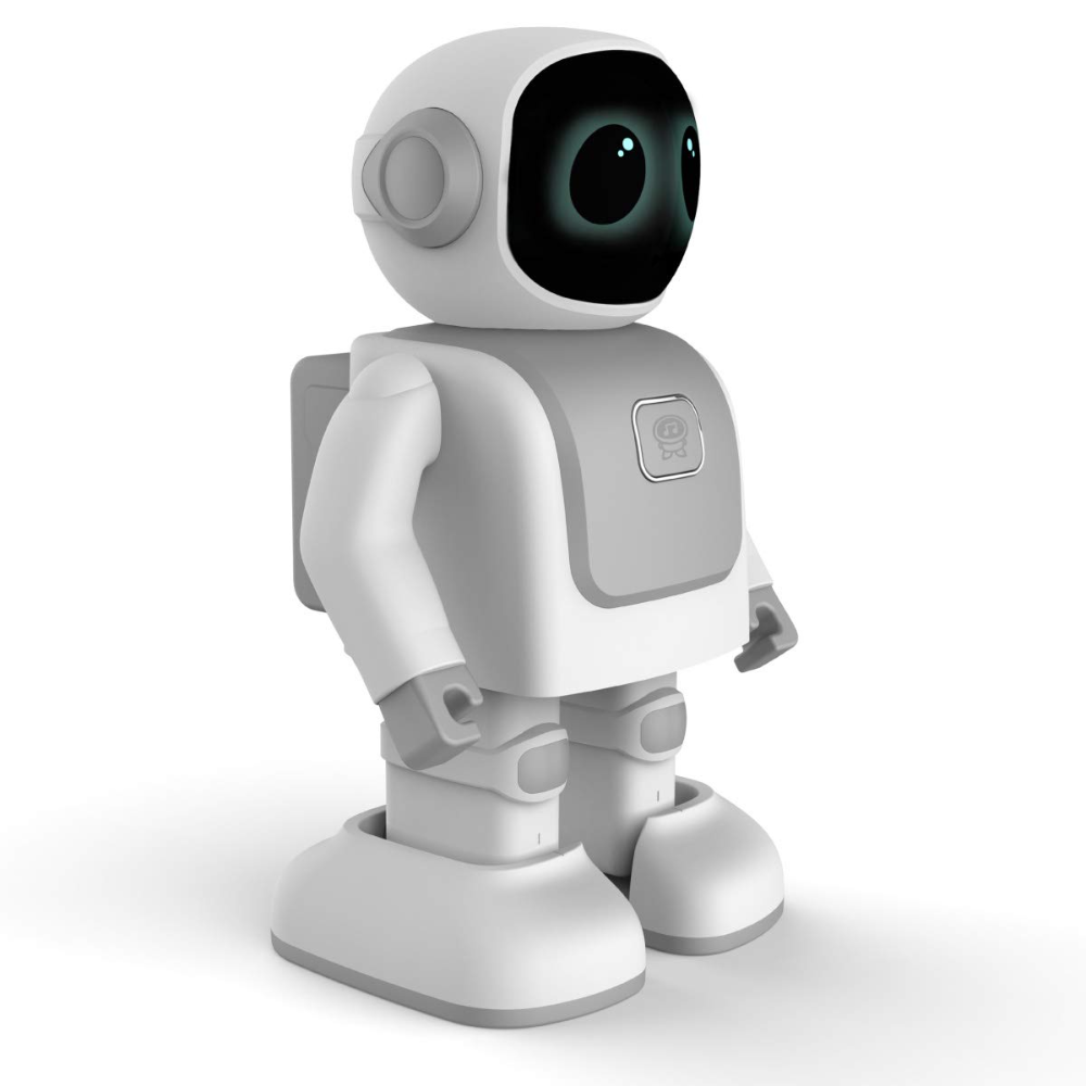Robert Dancebot